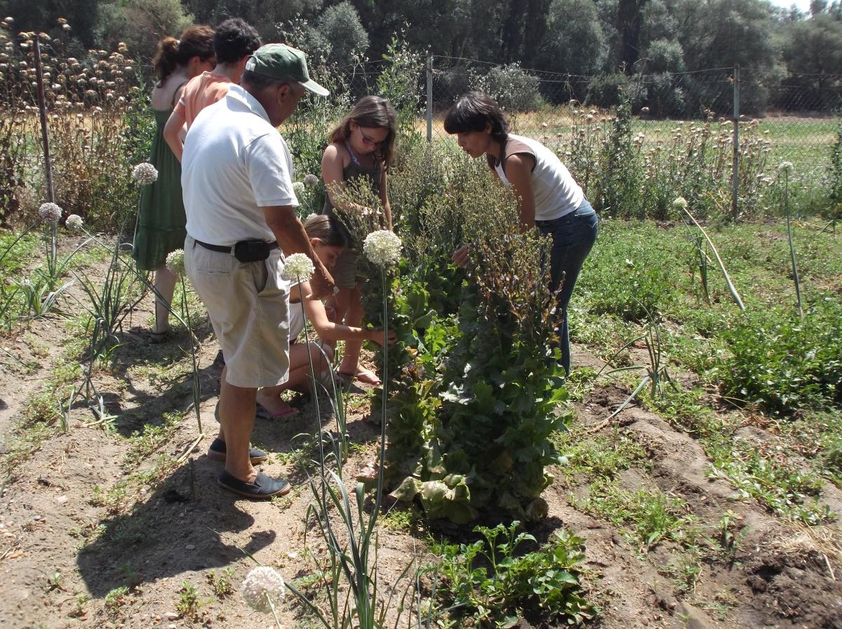casas rurales ecologicas,  turismo rural sostenible, responsable, ecoturismo, granjas rurales ecológicas para ir con niños villas de lujo Valladolid, Salamanca, Medina del Campo, Toro, Tordesillas, Zamora
