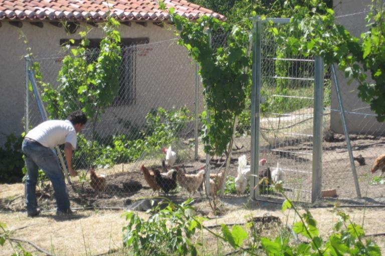 Casas rurales con niños agroturismo Valladolid