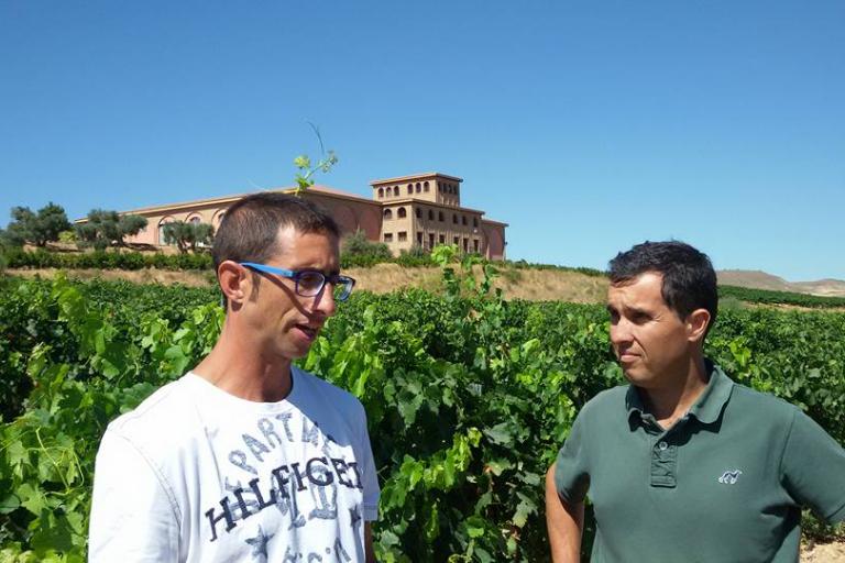 Enoturismo, catas  vinos, visitas  bodegas Valladolid, Toro