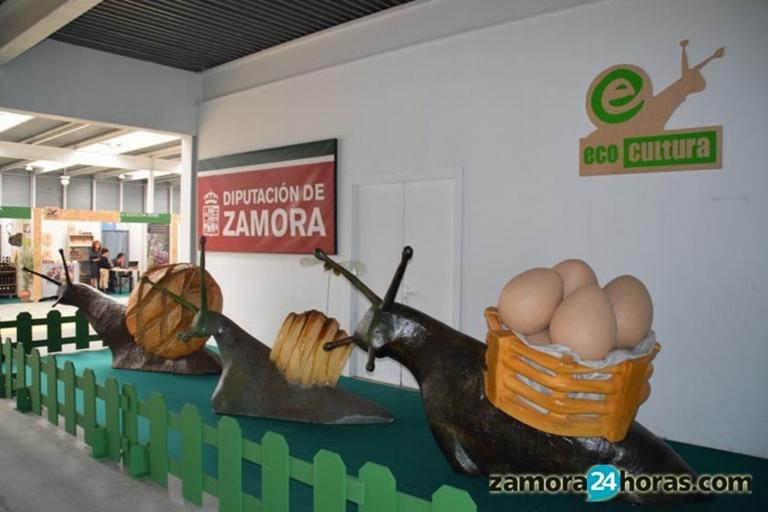 villas de lujo, casas de vacaciones, casas rurales con encanto cerca de madrid para ir con niños, para 20 personas, Toro, Tordesillas, Medina del Campo, Zamora, Valladolid, Salamanca