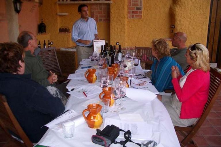visitas a bodegas, viñedos, ruta del vino Ribera del Duero, Rueda, casas de vacaciones,casas rurales con encanto, villas de lujo Valladolid, Salamanca, Medina del Campo, Tordesillas, Toro, Zamora