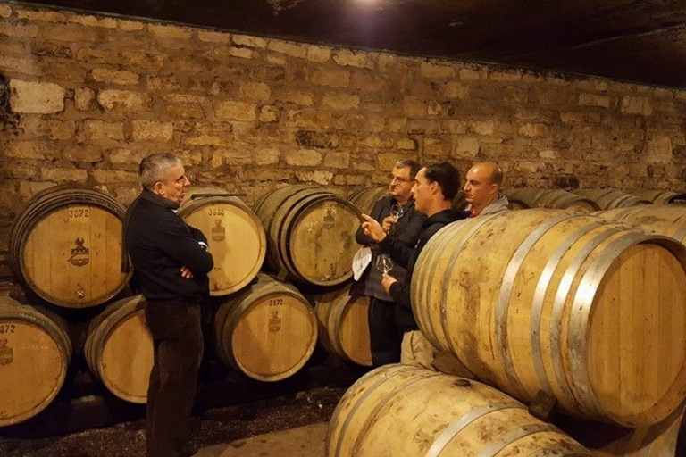 winery tours, routes, wine tourism, tastings Spain Ribera del Duero, wineries and vineyards visits, organic, natural, local wines, rental villas Castile and Leon, Valladolid, Salamanca, Segovia, Avila