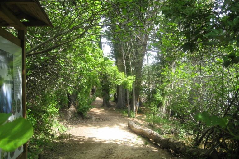 Ocio infantil en Castilla y León - Chiquiocio y Beautiful Alamedas